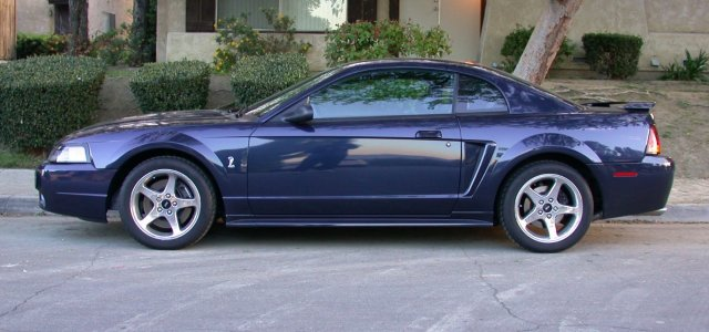 my 2001 ford svt mustang cobra